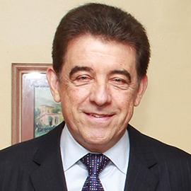 Vice-Presidente Metropolitano